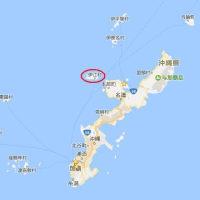 サンゴ産卵 海、ピンクに 伊江・阿良の浜海岸