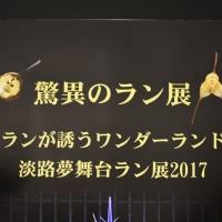 驚異のラン展   2017   奇跡の星の植物館  淡路夢舞台       No. 1     目の保養に立寄った❣️