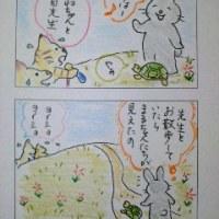 まるココの日々(61)