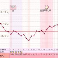 D40 高温期25日目