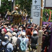 浅草三社祭・・1