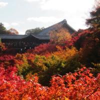 そうだ、京都へ行って来た