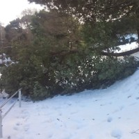 大雪・・・。