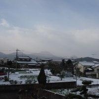 昨日の朝はうっすら雪景色。
