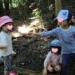 2017年7月21日(金)の【写真館】