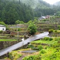 広島県・安芸太田町の「千本の棚田」
