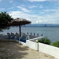 オランゴ島2
