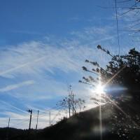 蒼い画布 飛行機雲が 画家になる