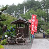 雨の金泉寺・あじさい寺