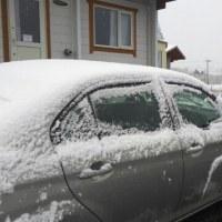 北海道4日目は雪から