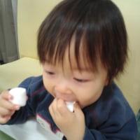 コブログ2012.04.15