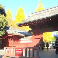 スケッチ散歩~東京大学本郷キャンパス