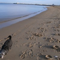 St. Kilda Beach in Winter --- on a Sunday Morning