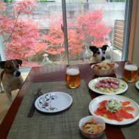 紅葉宴会!