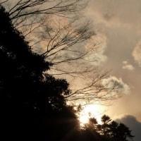 デジブック 『高尾の梅を見ながら』