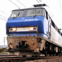 EF200-19