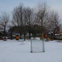 1月23日(月)園の様子