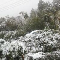 大雪だぁー! 車が動かん!(追記あり)