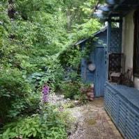 花ハート神戸オープンガーデン Bエリアに行ってきました。