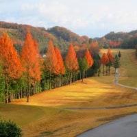 Gifu / Gifu Kita Country Club ( 岐阜北カントリークラブ)