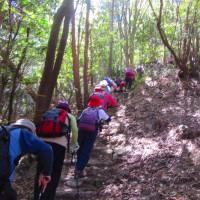16 二ヶ城山(483m:安佐北区)登山  まだまだ続く上りを
