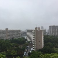 おはよう。雨降りの朝です。