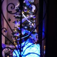 点灯したクリスマスツリーと…女子会。