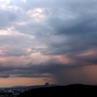 9月22日のルーク♪ & 雨の道筋