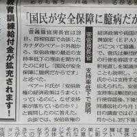 「国民が安全保障に臆病だから」 菅官房長官発