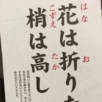 日本の諺(ことわざ)