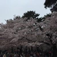 大宮 vs 神戸