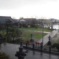 本屋親父のつぶやき 11月28日 今朝も春日神社境内参拝が出来ました。