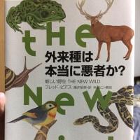 『外来種は本当に悪者か?』 人間の一方的な都合と理屈による自然観の変革を迫る刺激的な一冊