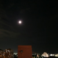 皆既月食のお月さん。