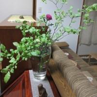 「うつむいたらあかん」 生け花の極意!」 そして 残り花たち。