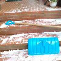 予報通り雪でした