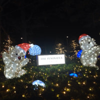 Happy Christmas☆