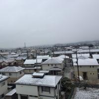 ホワイトデーとなごり雪