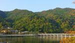 嵐山の紅葉、昨年と比較してみました。