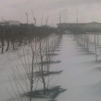 消雪材散布