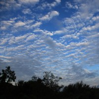 しまぞら夕空秋の雲 2016.10.23
