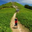 富士見台高原・・・夏の高原散策♪