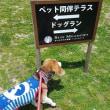 マッキンへ女子旅withガオひびファミリー(2日目・その1)
