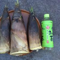 孟宗竹のタケノコをいただきました