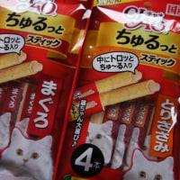 「ちゅ~る」で知った2月22日はネコの日
