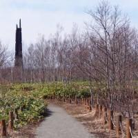 イーハトーブセンター「会報 第54号●さくら」と森のカタクリ