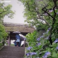2017北鎌倉