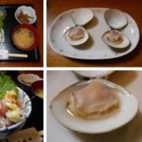富士山と釜揚げしらす丼
