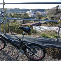 自転車に乗りました