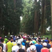 2016日光杉並木マラソン